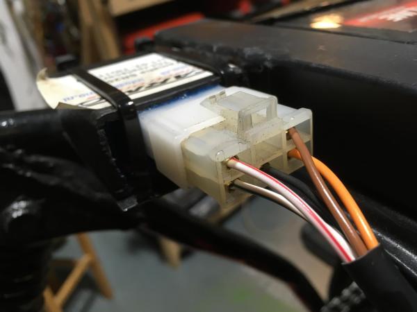 ign plug